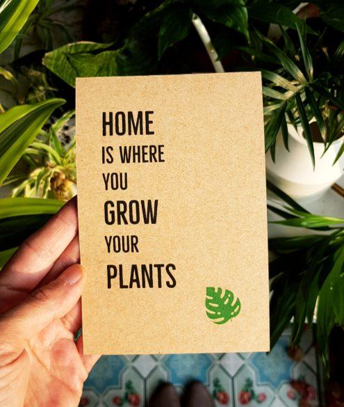 צמחי בית טרופיים by my urban jungle